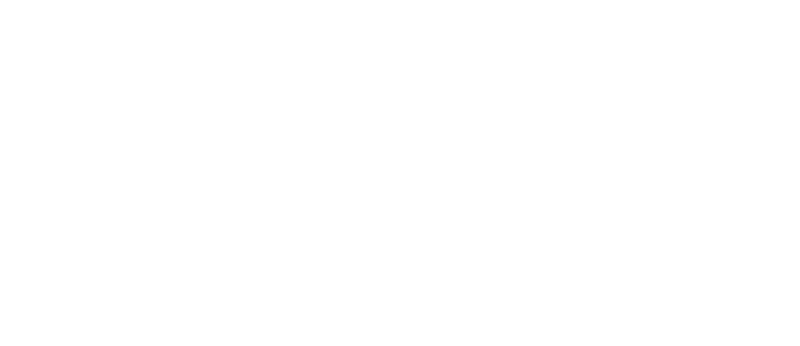 TimesLab
