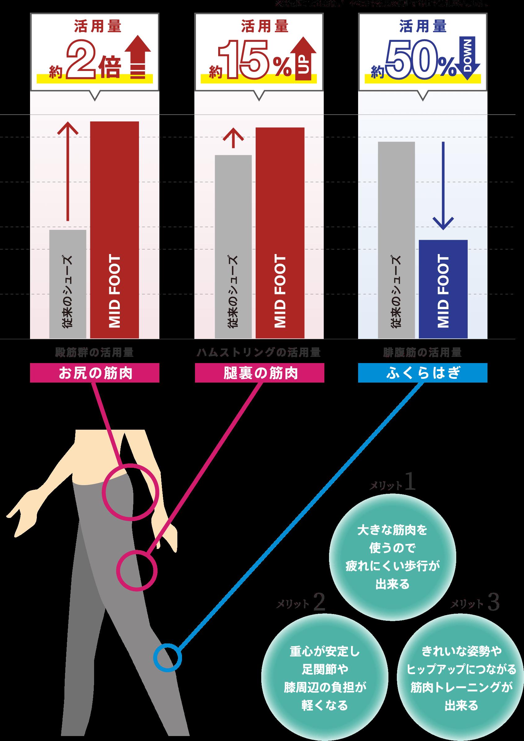 MIDFOOTはお尻の筋肉を積極的に活用します。