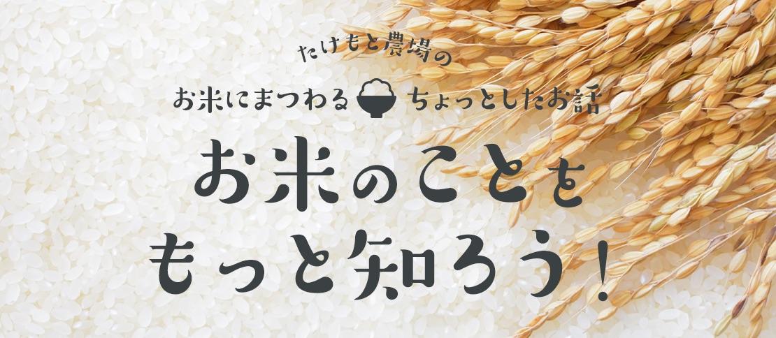 お米のことをもっと知ろう!