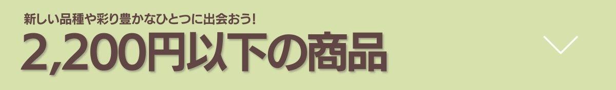 """""""2200円以下の商品"""""""