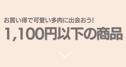 """""""1100円以下"""""""