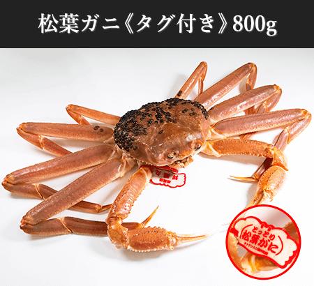 松葉ガニ《タグ付き》800g:送料無料/即日発送