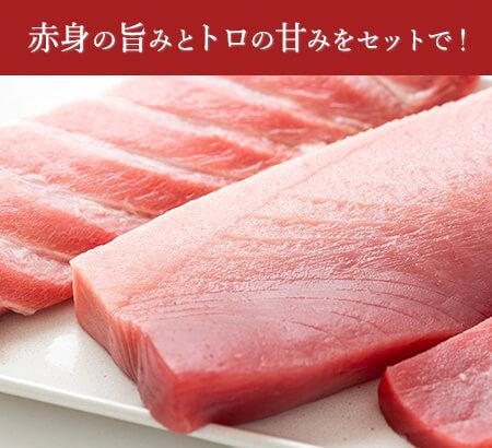 生本マグロ【S】セット:送料無料・即日発送