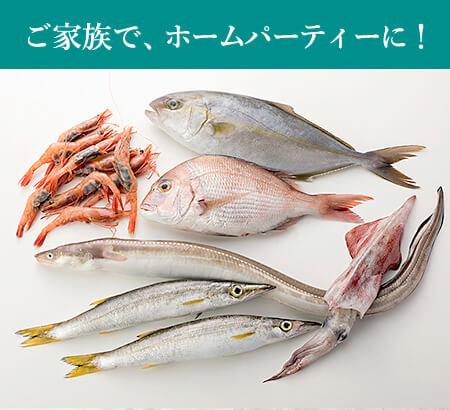 ご家族やホームパーティーにはこれ!「旬」のお魚セットM:送料無料・即日発送