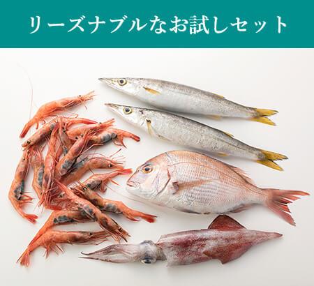 リーズナブルなお試しサイズ「旬」のお魚セットS:送料無料・即日発送