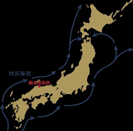 御来屋漁港と対馬海流マップ