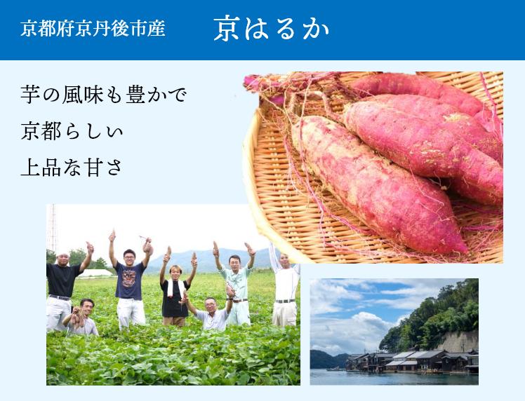 京都府京丹後市産 京はるか 芋の風味も豊かで京都らしい上品な甘さ