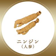 ニンジン(人参)