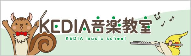 KEDIA MUSIC SCHOOL