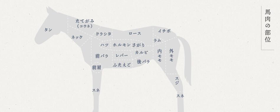 馬肉の部位:タン、たてがみ(コウネ)、ネック、クラシタ、ロース、イチボ、ラム、ハツ、ホルモン、サガリ、前バラ、前肩、スネ、レバー、フタエゴ、カルビ、後バラ、内モモ、外モモ、スジ