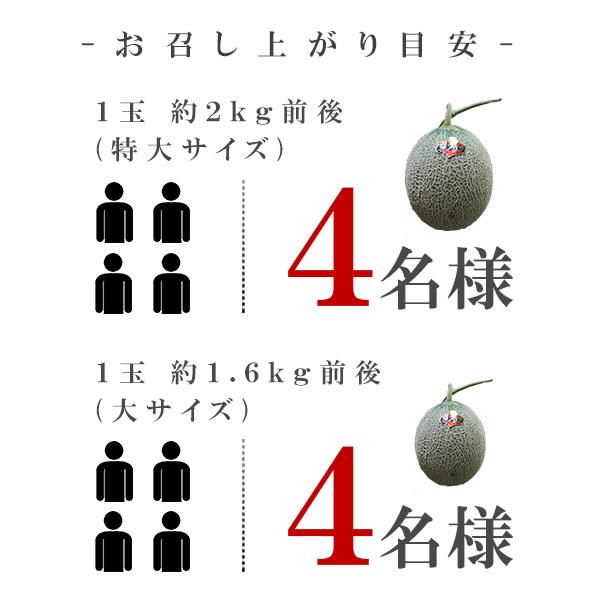 商品説明画像5