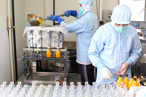温州みかんジュース製造2