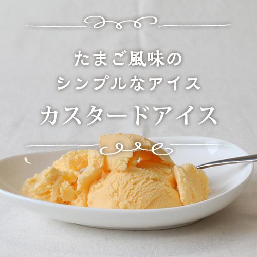 たまご風味のシンプルなアイスカスタードアイス