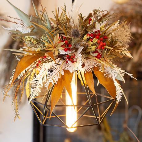 植物ブランドとコラボLED電球