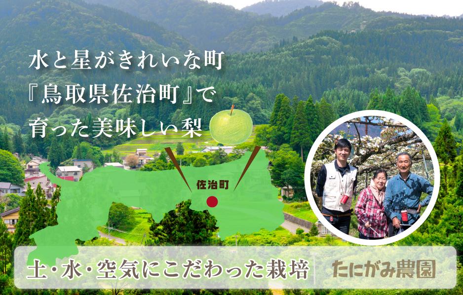 水と星がきれいな町 『鳥取県佐治町』で育った美味しい梨