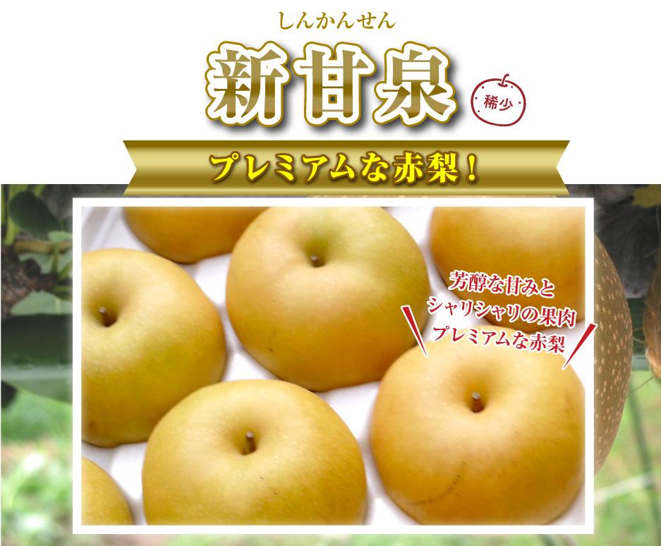 新甘泉(しんかんせん)プレミアムな赤梨!芳醇な甘みとシャリシャリの果肉プレミアムな赤梨