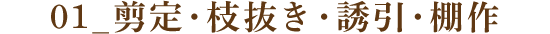 01_剪定・枝抜き・誘引・棚作