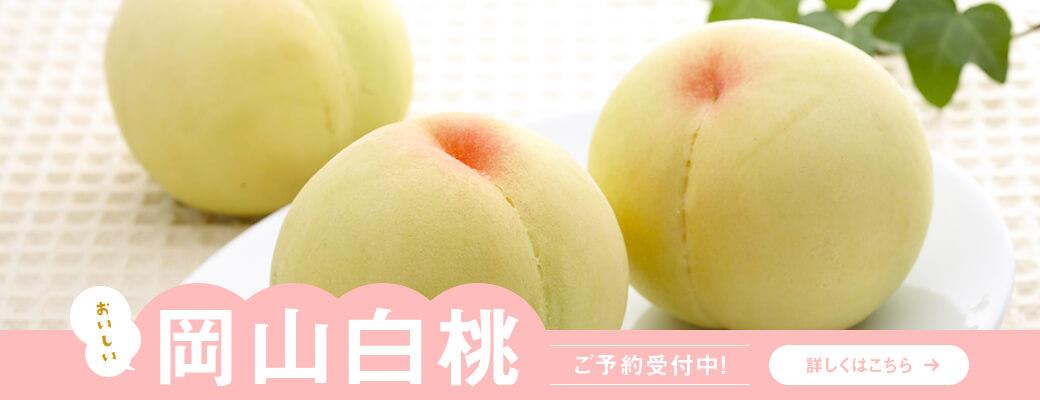 """岡山・香川の""""こだわり""""のフルーツ 桃の画像"""