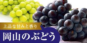 """岡山・香川の""""こだわり""""のフルーツ ぶどうの画像"""